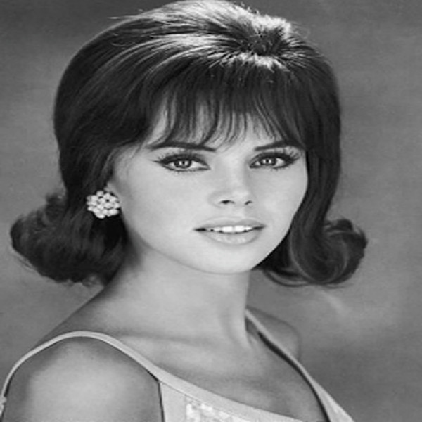 1960 Hairstyles For Long Hair  Coolest 1960s Hairstyles for Women