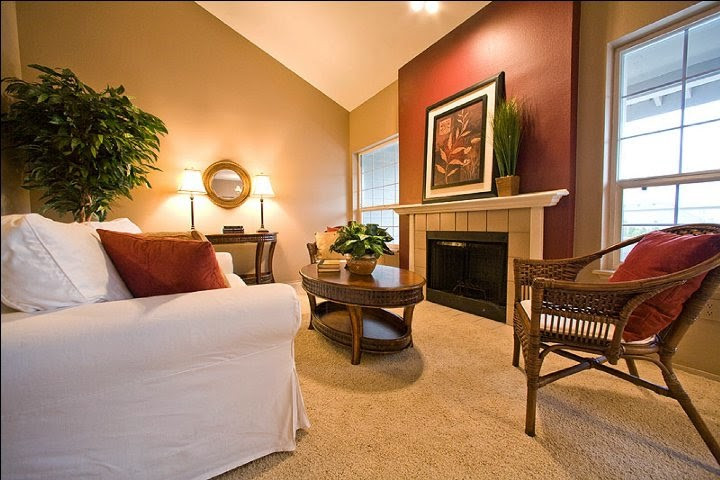 Best ideas about Accent Walls Painting Ideas . Save or Pin Paint Color Ideas for Living Room Accent Wall Now.