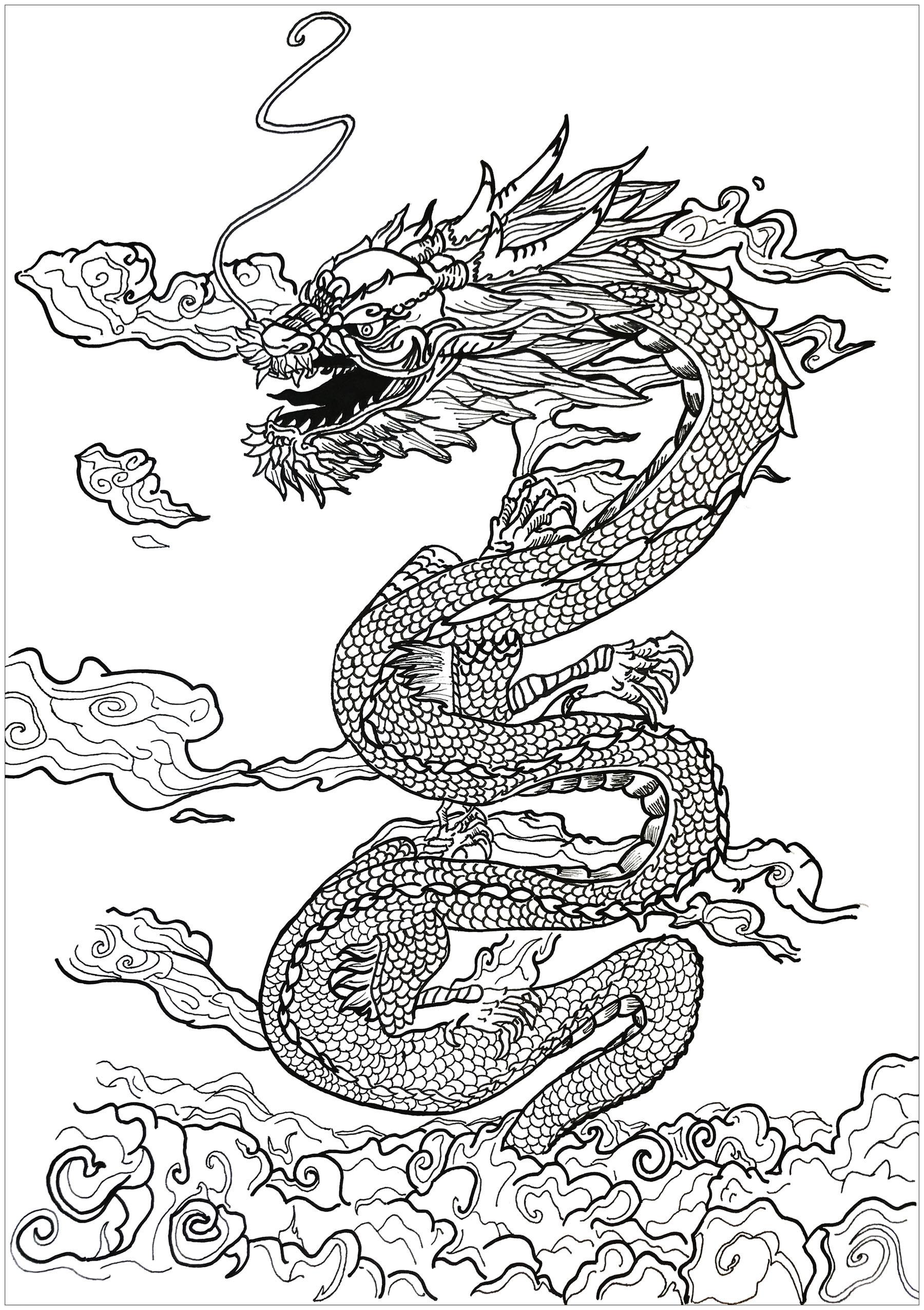 Adult Coloring Book Dragon  Dragon asian inspiration