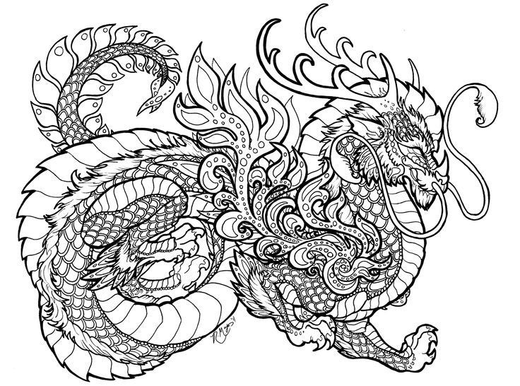 Adult Coloring Book Dragon  Dragon coloring pages for adults printable