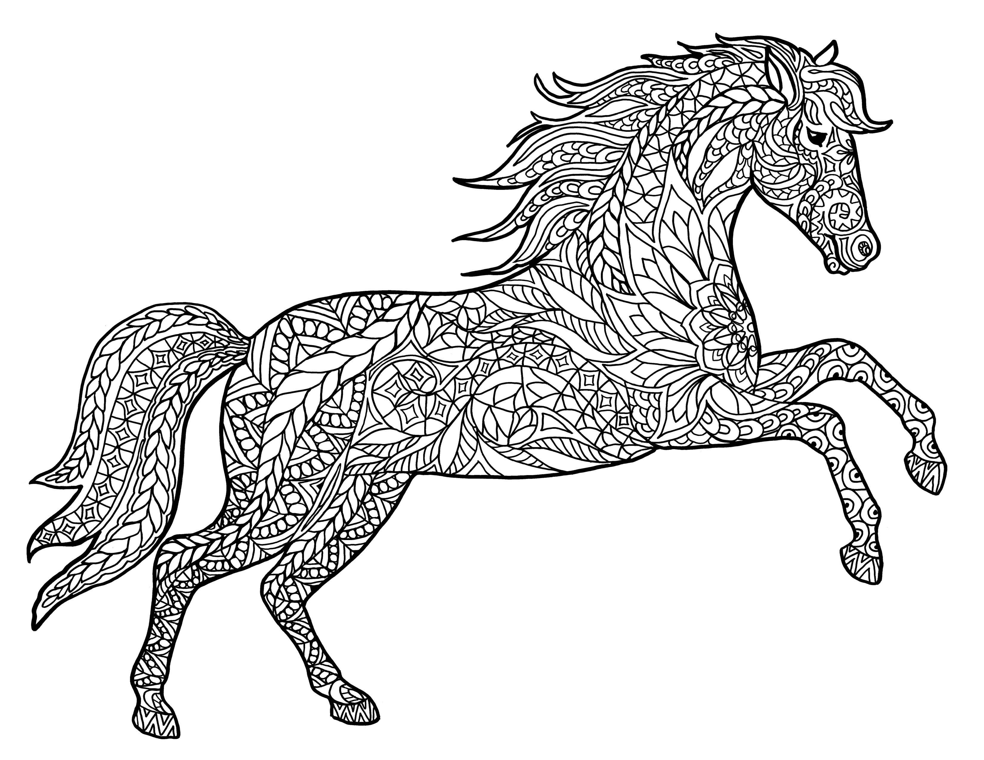 Adult Coloring Book Horse  Animal Coloring Pages for Adults Best Coloring Pages For