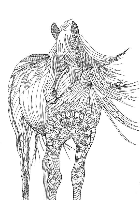 Adult Coloring Book Horse  Horse Amazing Animals Colouring Pages by Joenay