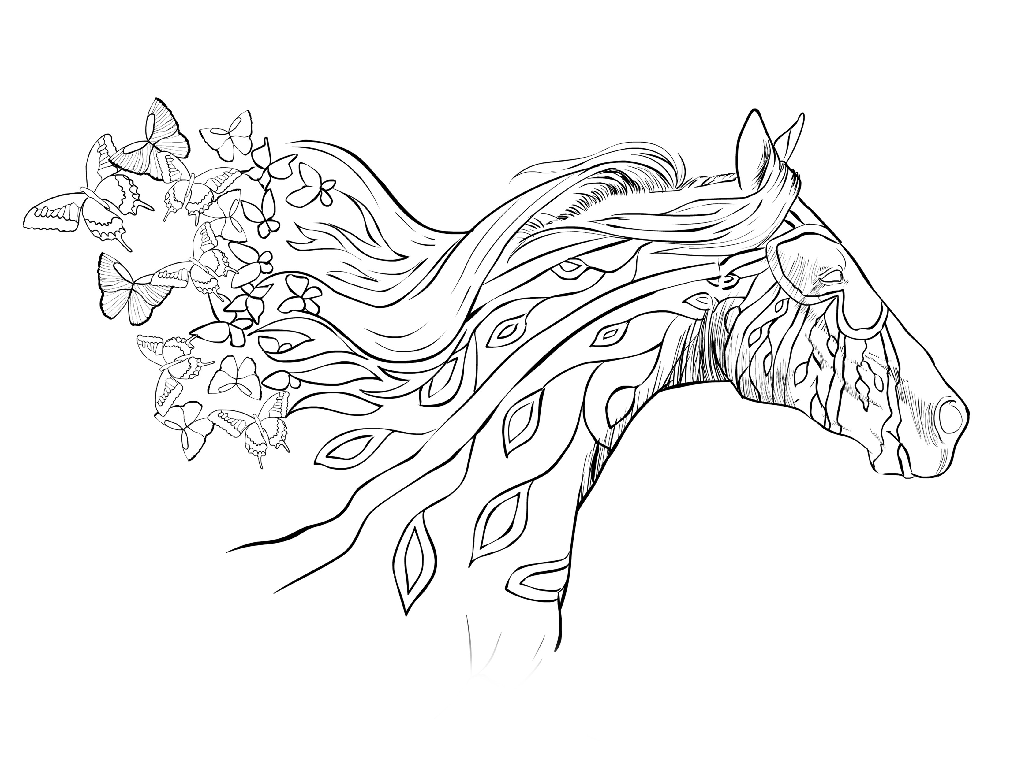 Adult Coloring Book Horse  running with the wind