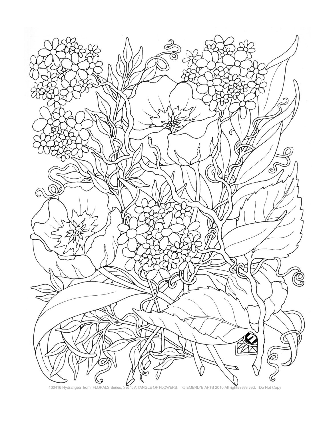 Adult Coloring Book Sets  Adult Coloring A Tangle of Flowers Set of 8 by emerlyearts