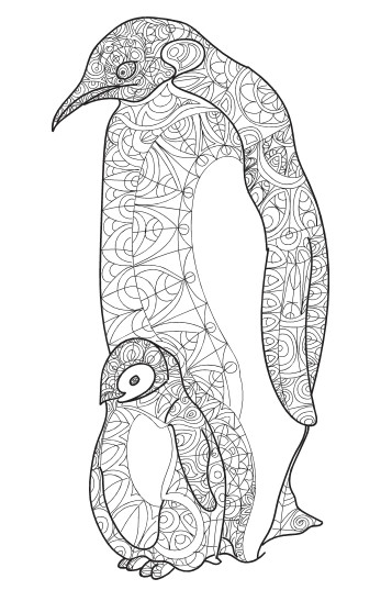 Best ideas about Adult Coloring Books Animals . Save or Pin Amazing Animals Vol 1 Anti Stress Coloring Book for Now.