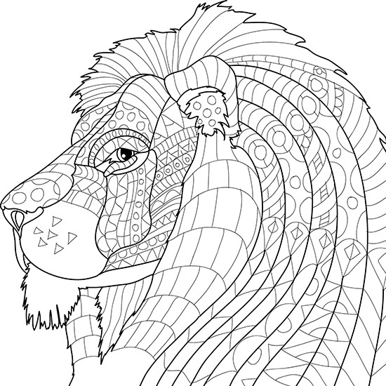 Best ideas about Adult Coloring Books Animals . Save or Pin Adult Coloring Pages Animals Best Coloring Pages For Kids Now.