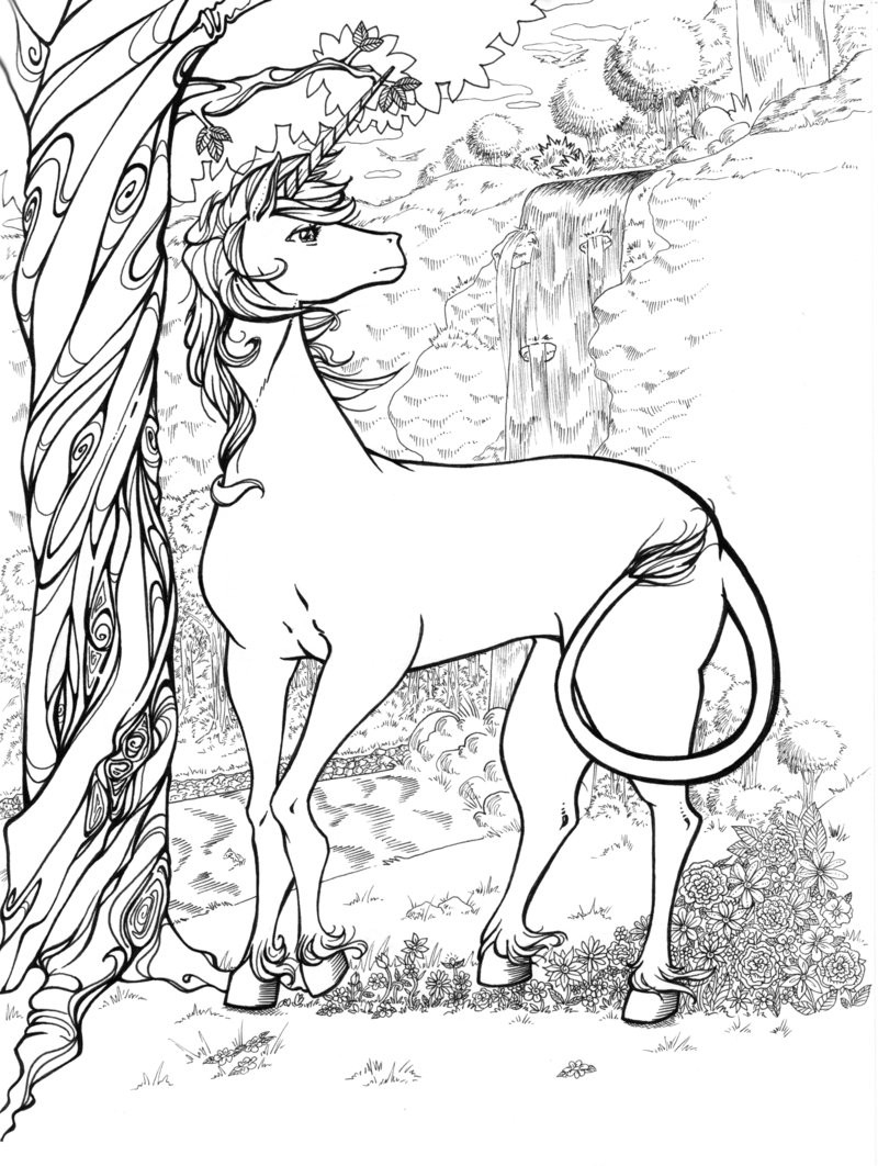 Adult Coloring Pages Unicorn  Unicorn Colouring Pages