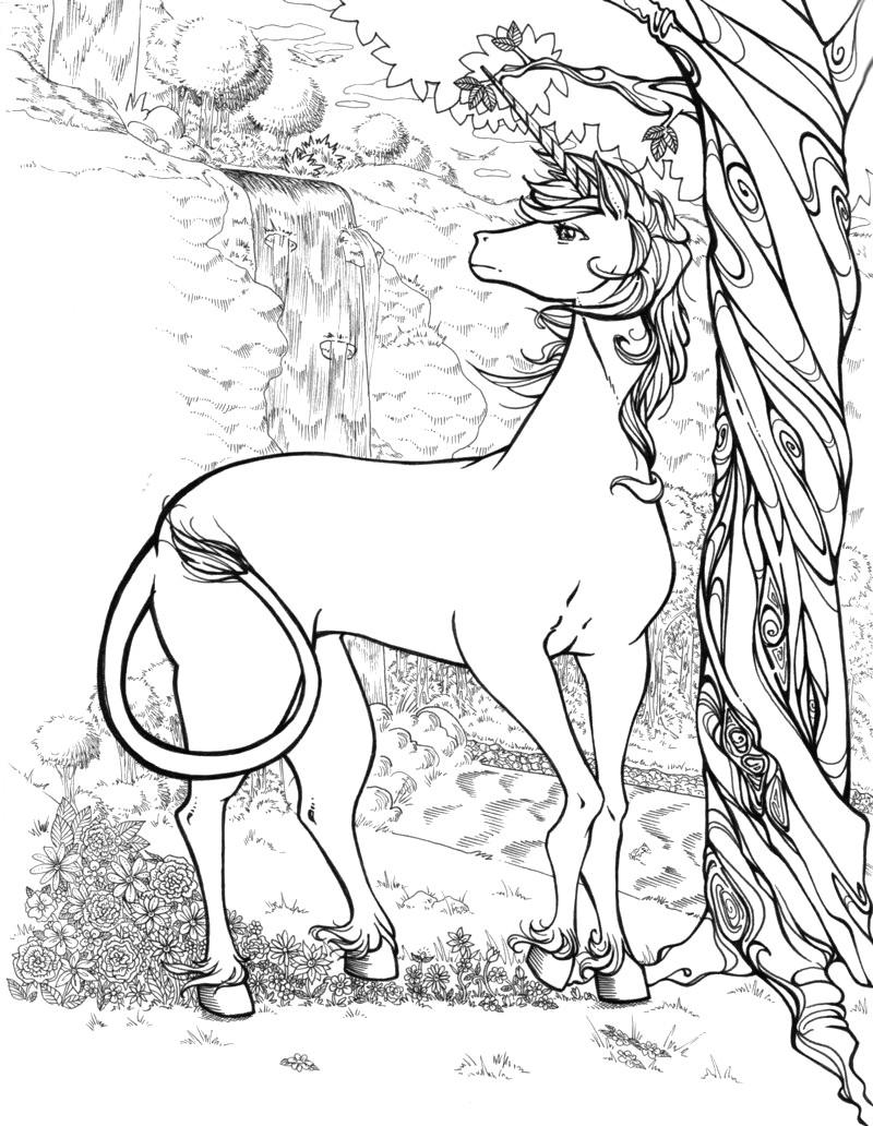 Adult Coloring Pages Unicorn  Unicorn Coloring Pages coloringcks
