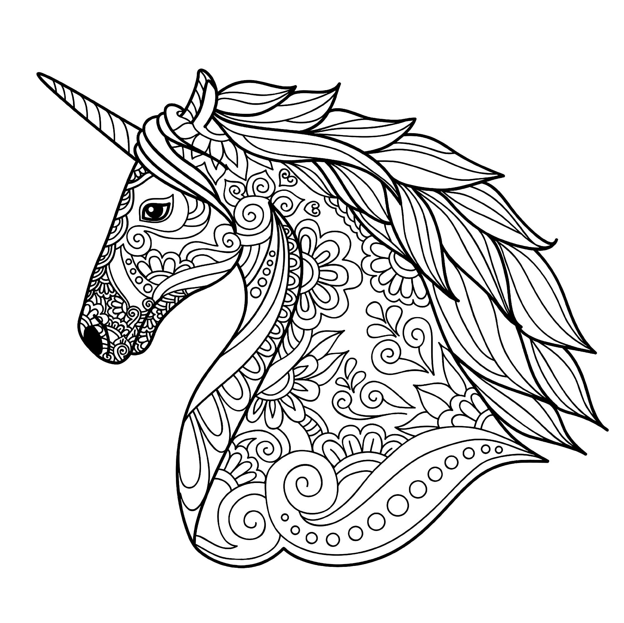 Adult Coloring Pages Unicorn  Unicorn head simple Unicorns Adult Coloring Pages