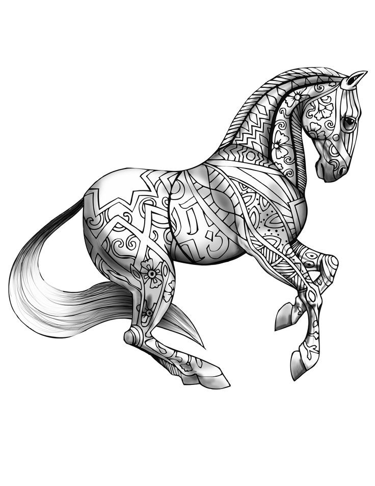 Adult Horse Coloring Pages  1055 best images about Adult Coloring Book on Pinterest
