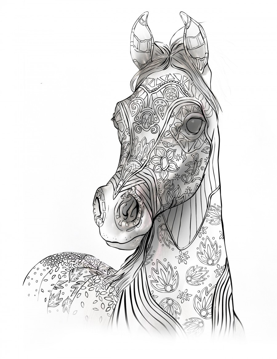 Adult Horse Coloring Pages  Coloring Books For Adults For Horse Lovers – The Magical