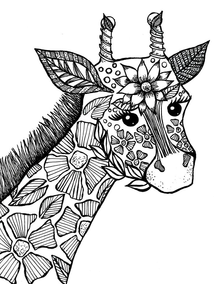 Animal Coloring Pages For Adults  Coloring Pages Animals For Adults – Color Bros