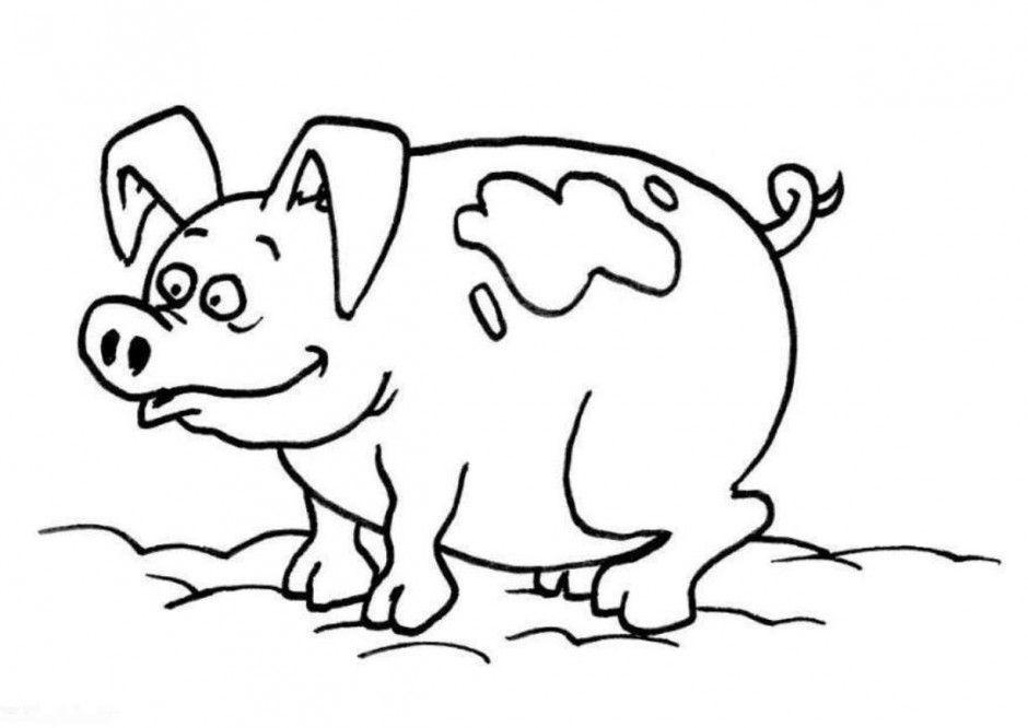 Baby Pig Coloring Pages  Baby Pig Coloring Pages AZ Coloring Pages