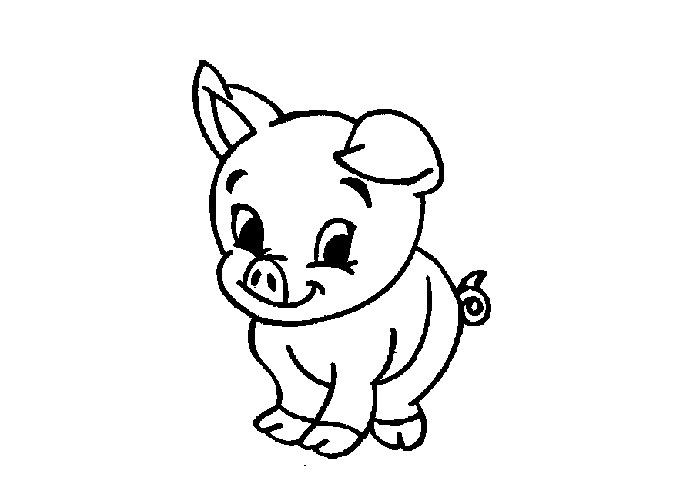 Baby Pig Coloring Pages  Baby pig colouring pages