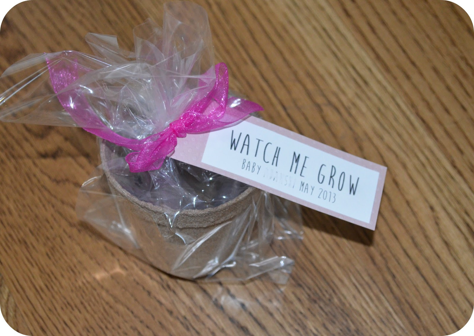 Baby Shower Party Favors DIY  Stay Blonde DIY Baby Shower Party Favors on a Bud