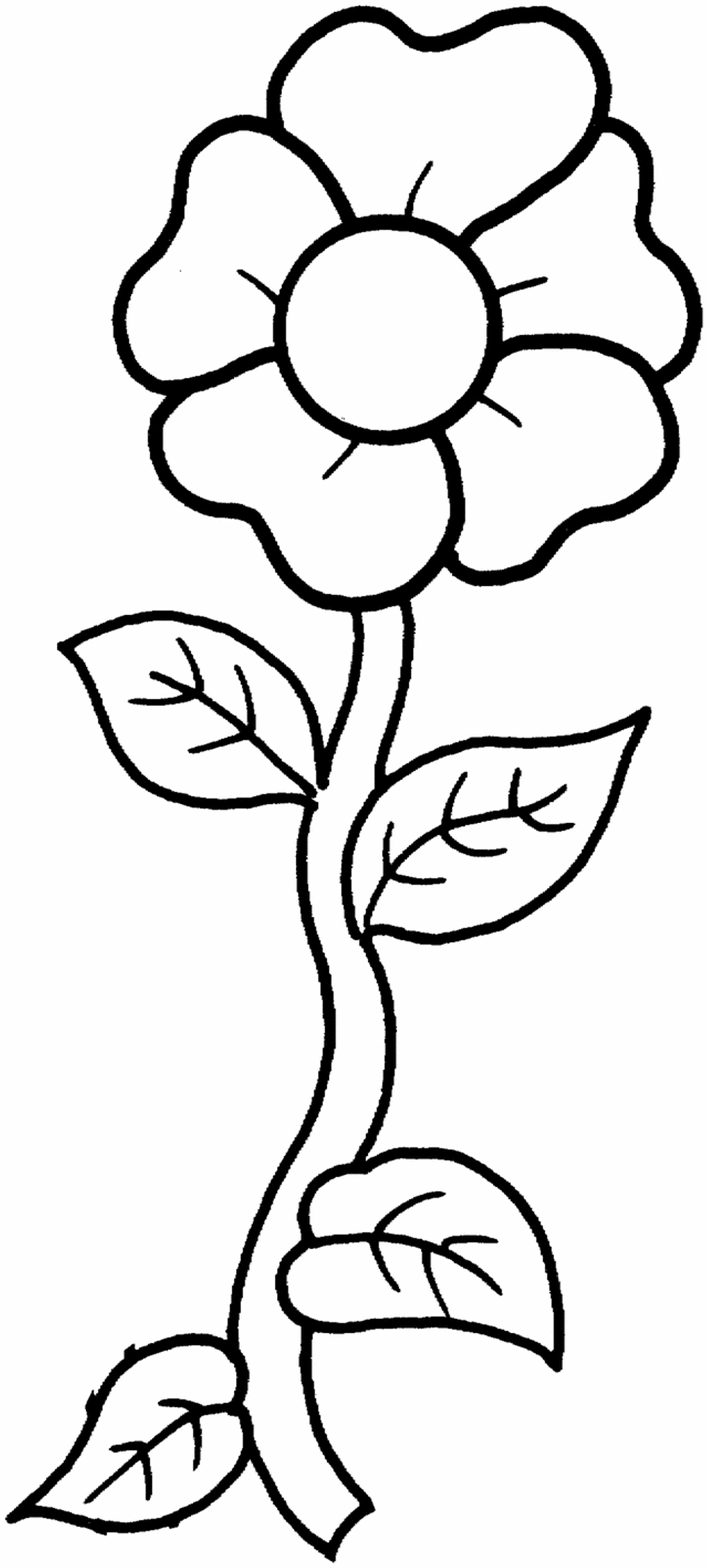 Best Free Coloring Sheets For Kids Printables  Free Printable Flower Coloring Pages For Kids Best