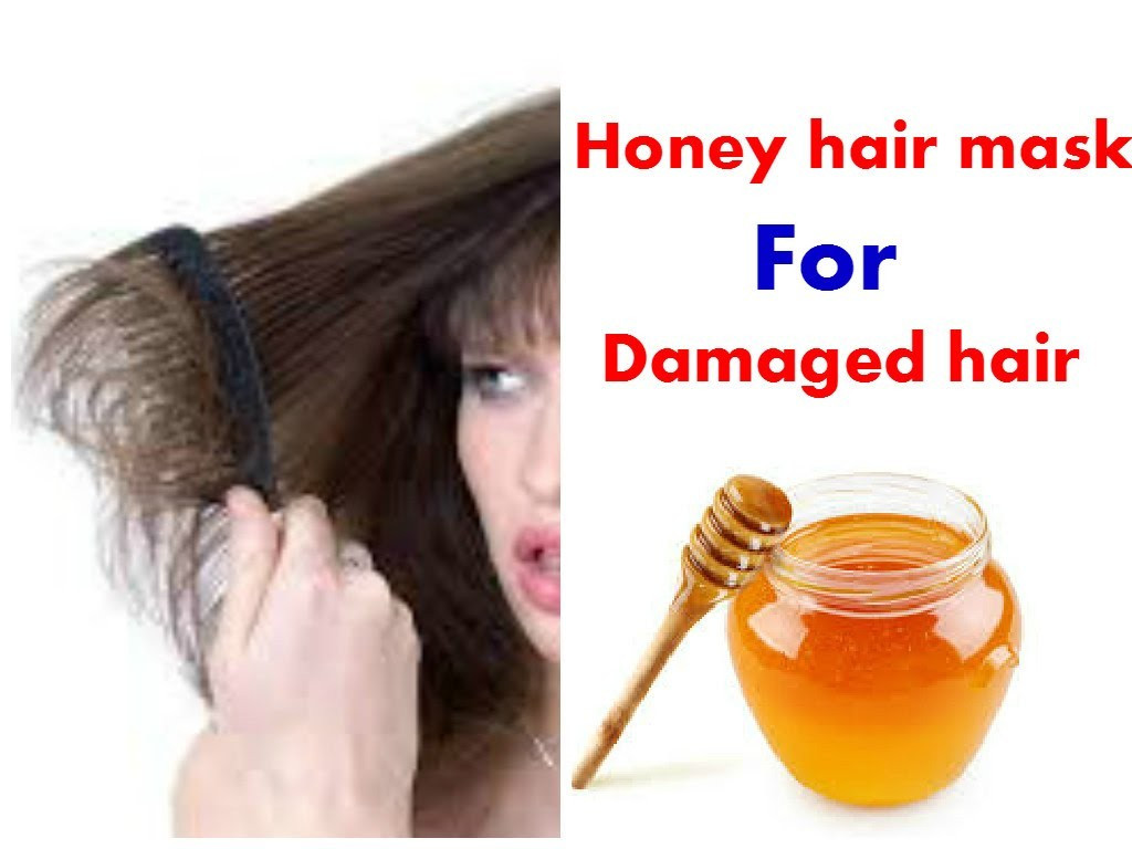 Best Hair Mask For Damaged Hair DIY  Best of Hair Masks for Damaged Hair Homemade razanflight