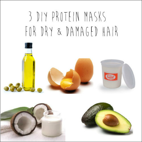 Best Hair Mask For Damaged Hair DIY  3 DIY Protein Masks for Dry & Damaged Hair