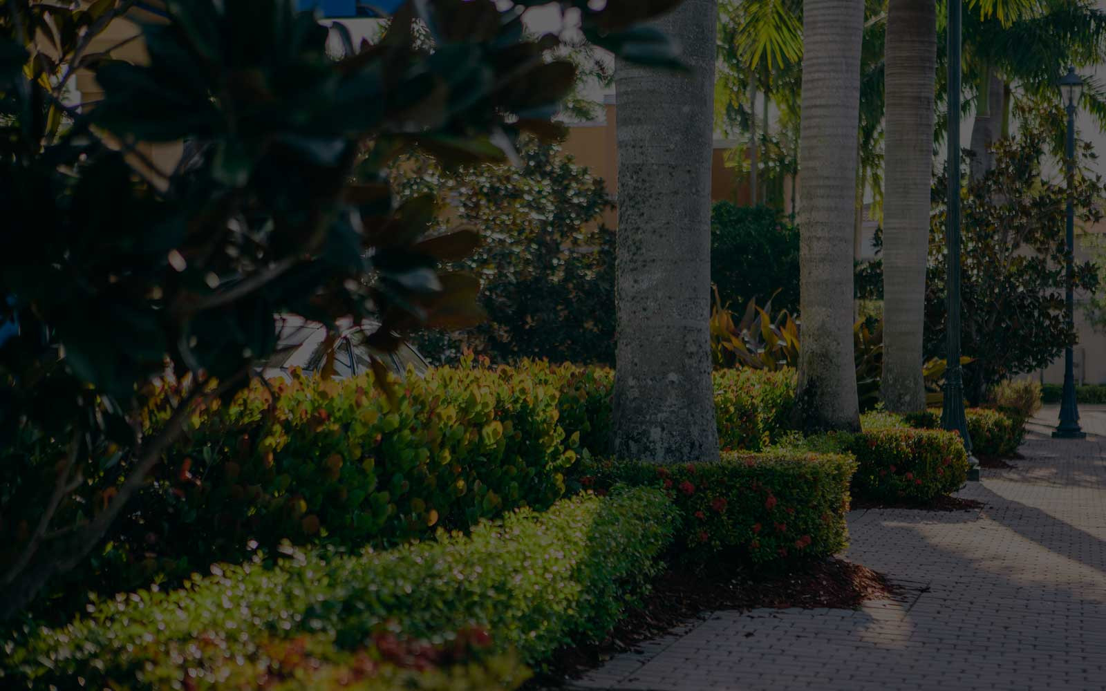 Best ideas about Big Earth Landscape Supply . Save or Pin Convenient locations in Bradenton Sarasota Tampa and Now.