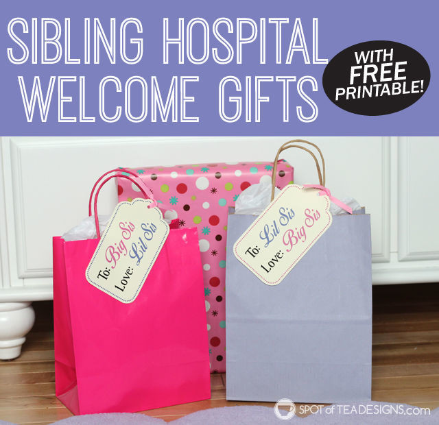Big Sister Gift Ideas From New Baby  Big Sister and Little Sister Wel e Gifts With Free