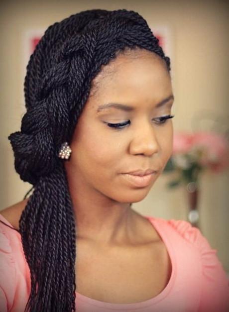 Black Braids Hairstyle  2016 black braid hairstyles