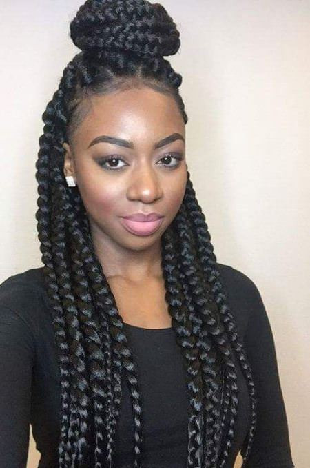 Black Braids Hairstyle  20 Hot Black Braided Hairstyle