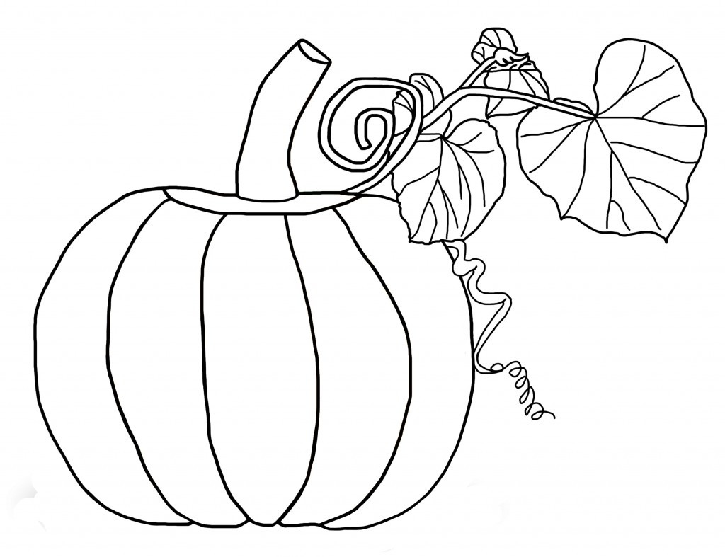 Best ideas about Blank Pumpkin Coloring Sheets For Kids . Save or Pin Free Printable Pumpkin Coloring Pages For Kids Now.