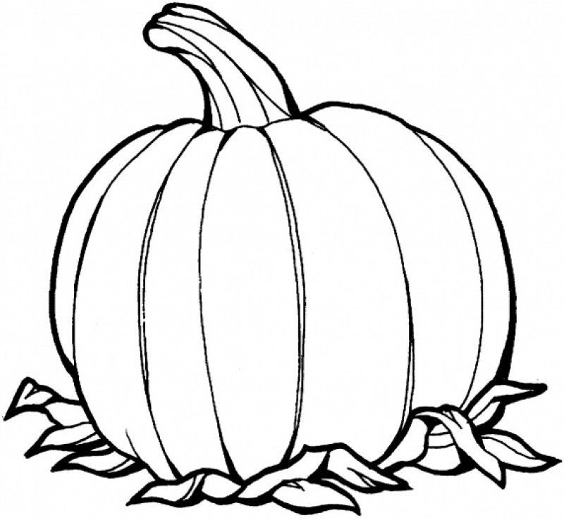 Best ideas about Blank Pumpkin Coloring Sheets For Kids . Save or Pin Blank Pumpkin Coloring Pages Coloring Home Now.