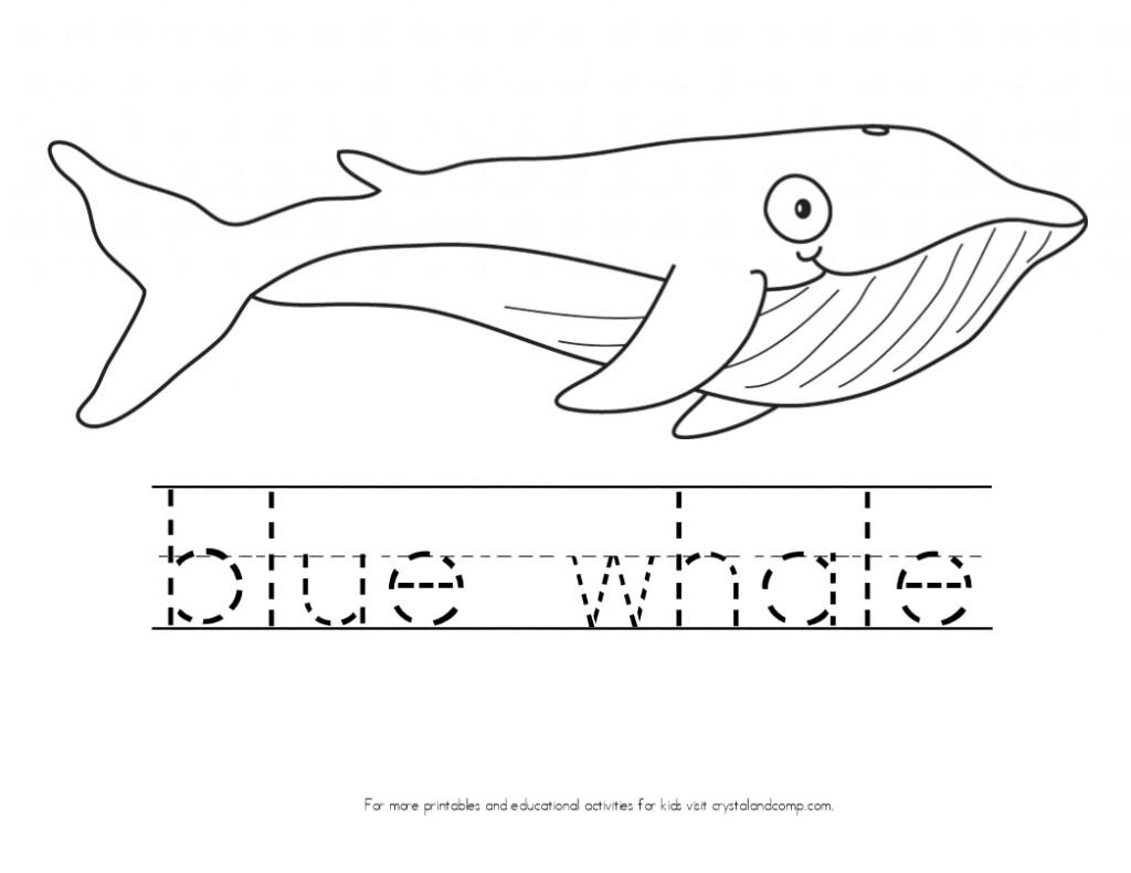 Blue Whale Coloring Pages  Kid Color Pages Ocean Theme