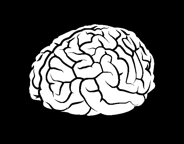 Brain Coloring Sheet  Brain coloring page coloringcrew