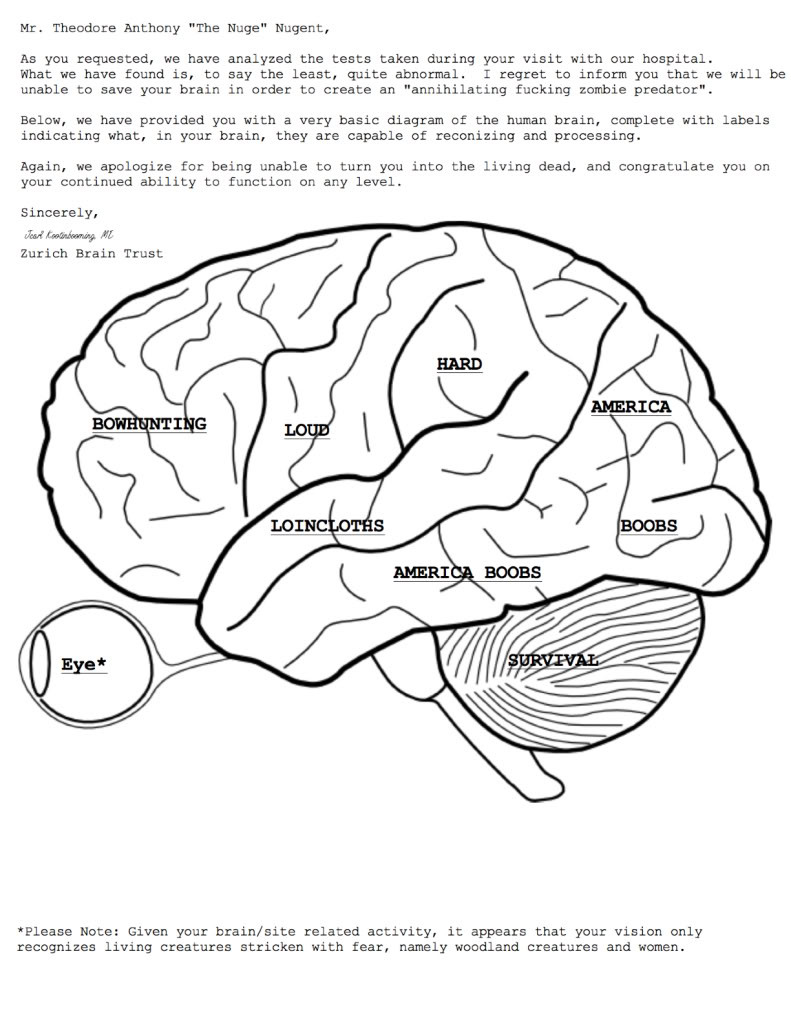 Brain Coloring Sheet  Printable Worksheets About the Brain