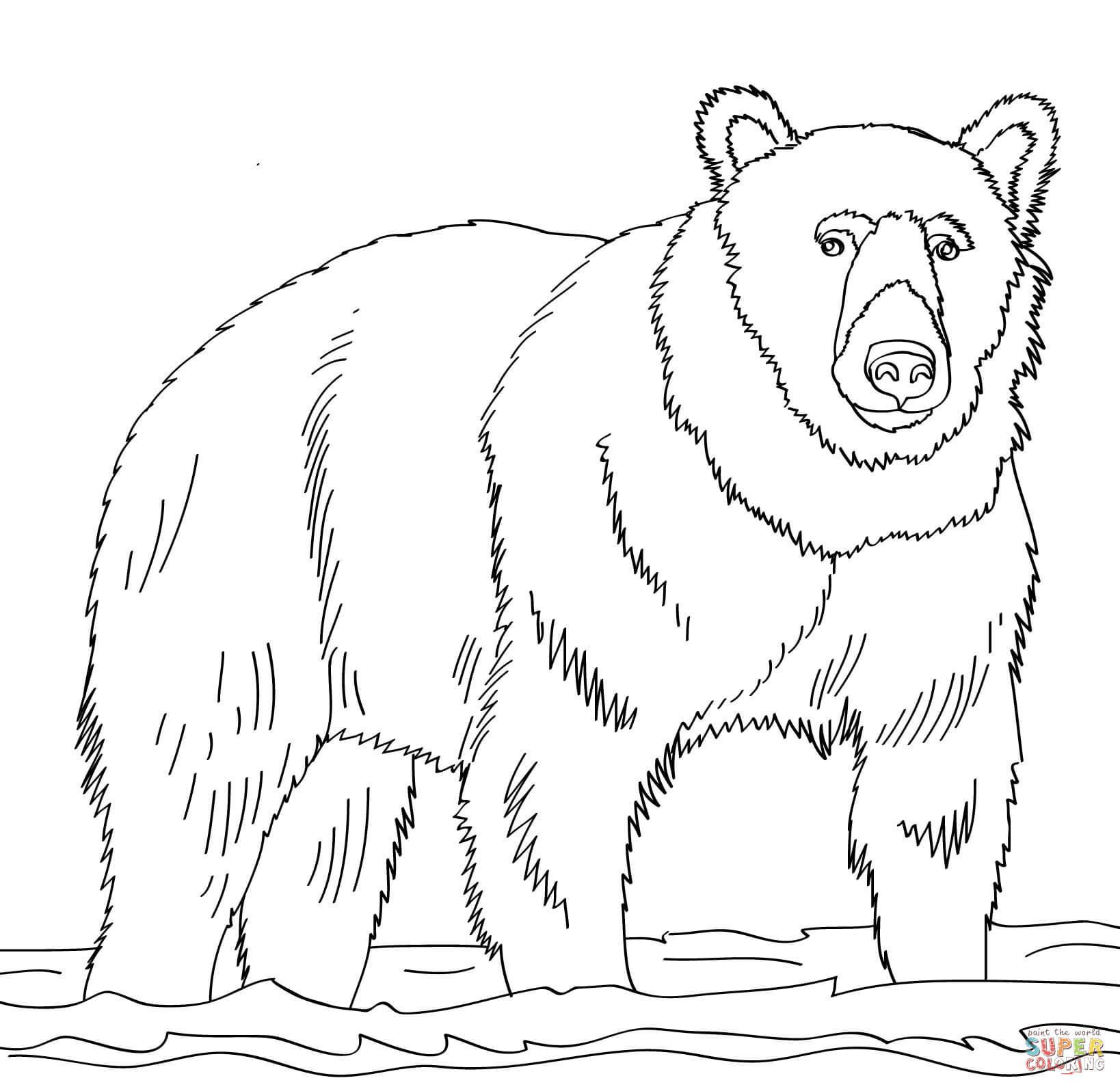 Brown Bear Brown Bear Coloring Pages  Brown Bear Coloring Pages Coloring Pages For Children