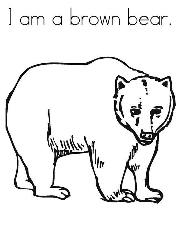 Brown Bear Brown Bear Coloring Pages  Brown Bear Coloring