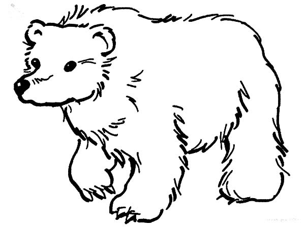 Brown Bear Brown Bear Coloring Pages  Brown Bear Coloring Page