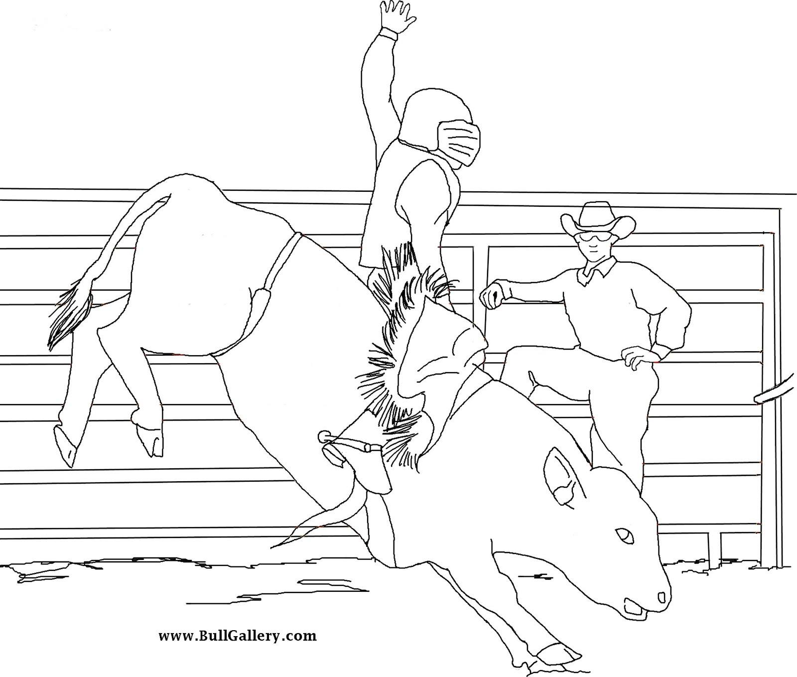 Bull Riding Coloring Pages  Bull To Color Free Bull Gallery