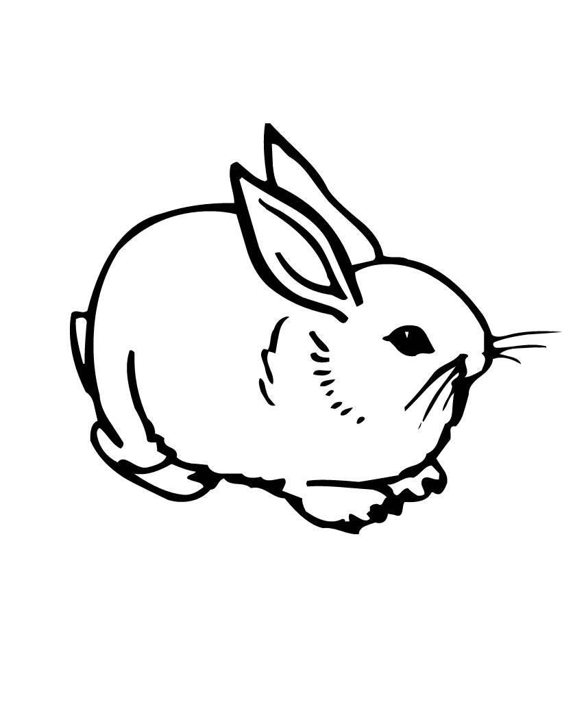 Bunny Coloring Pages  Free Printable Rabbit Coloring Pages For Kids