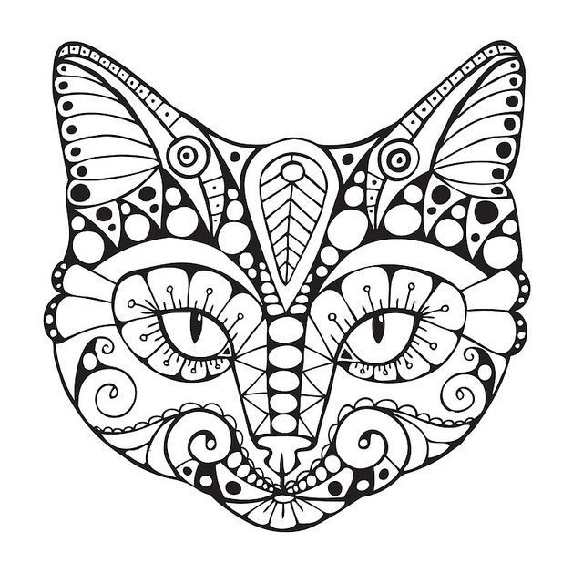 Cats Adult Coloring Book  Cat Coloring Pages for Adults