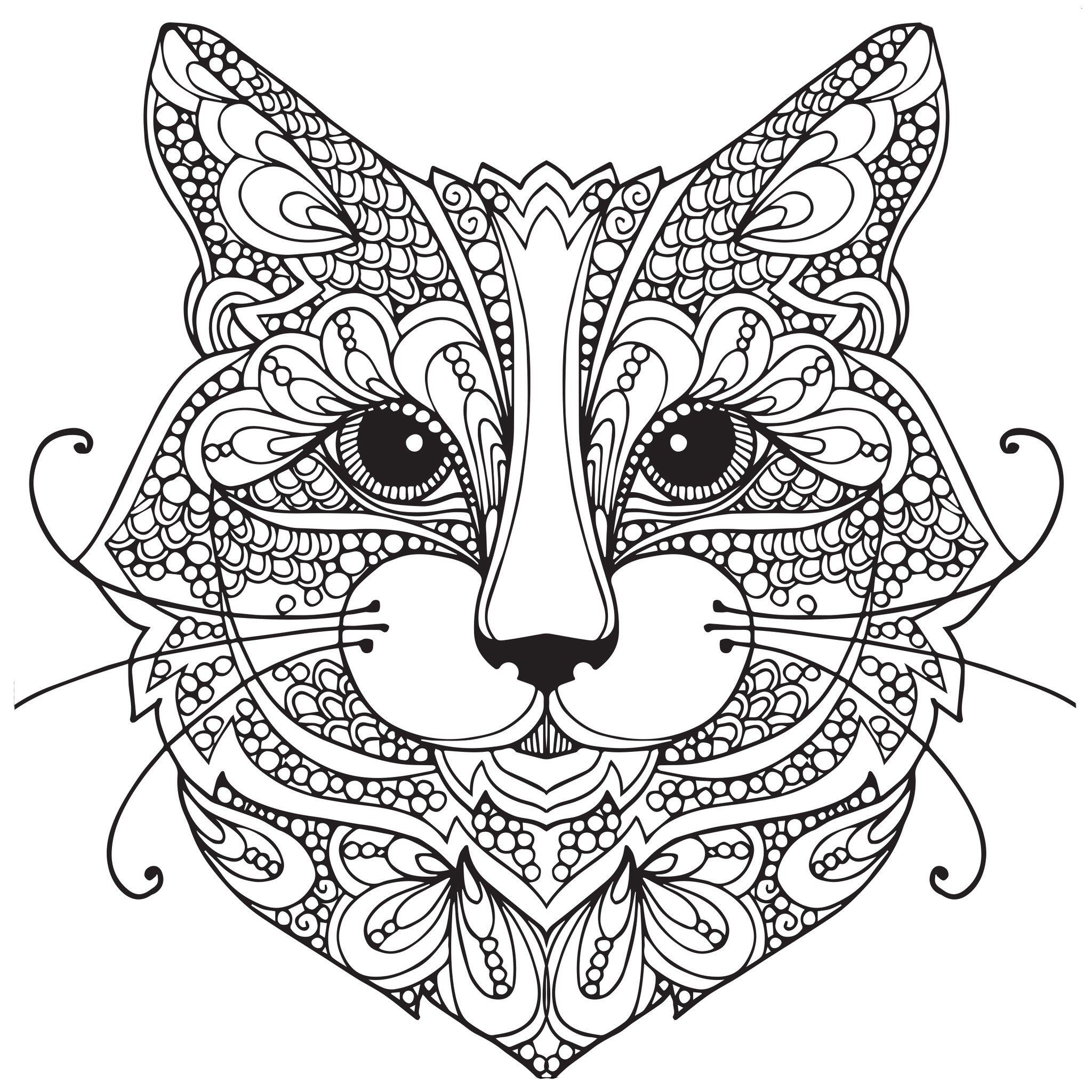Cats Adult Coloring Book  Adult Coloring Pages Cat 1 coloring pages