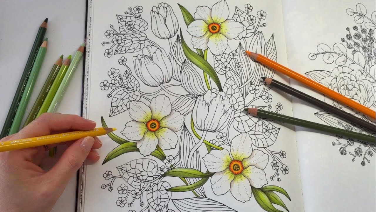 Colored Pencil Coloring Books  HOW I COLOR DAFFODIL