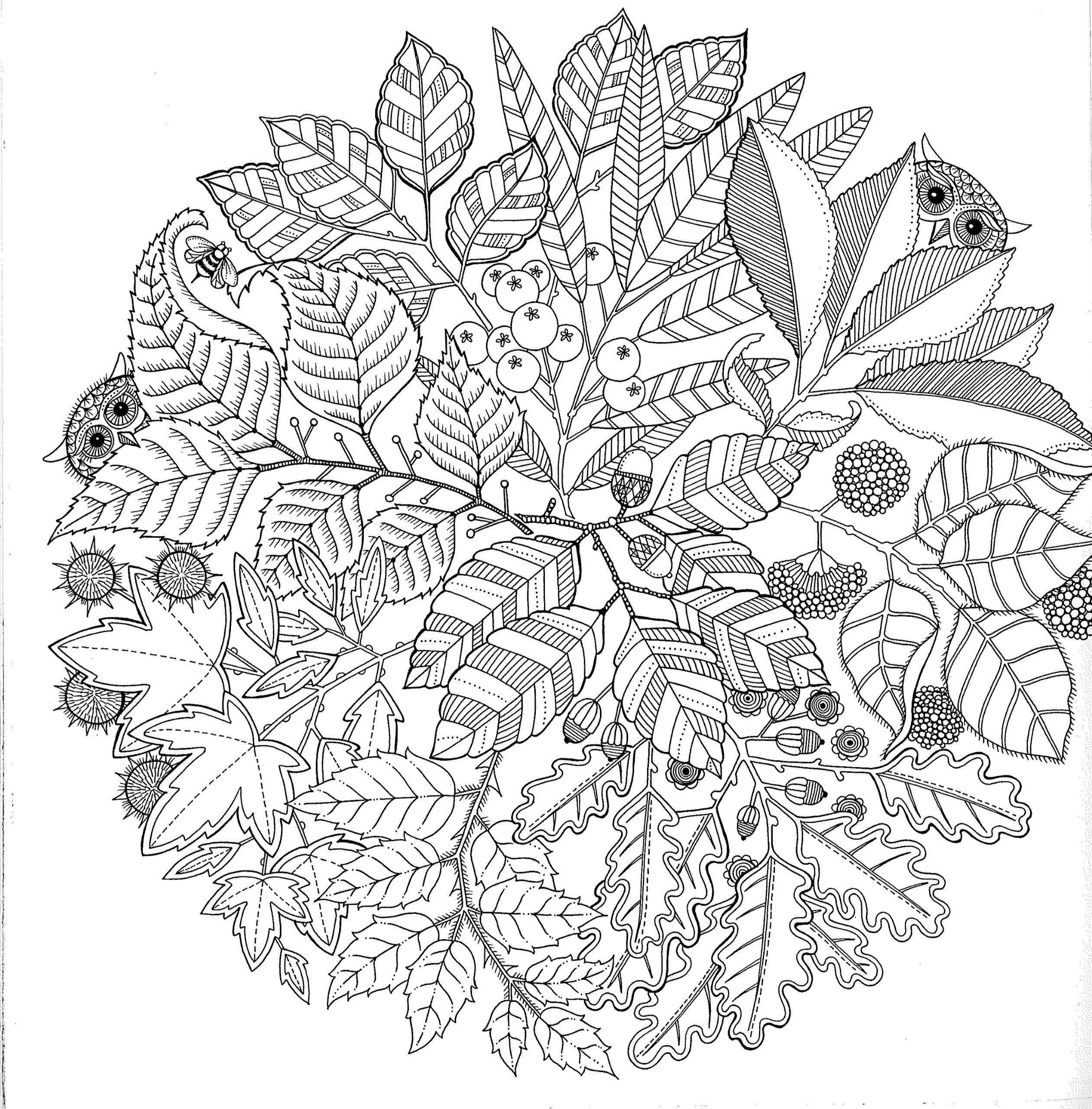 Coloring Book For Adults  Free Printable Abstract Coloring Pages for Adults