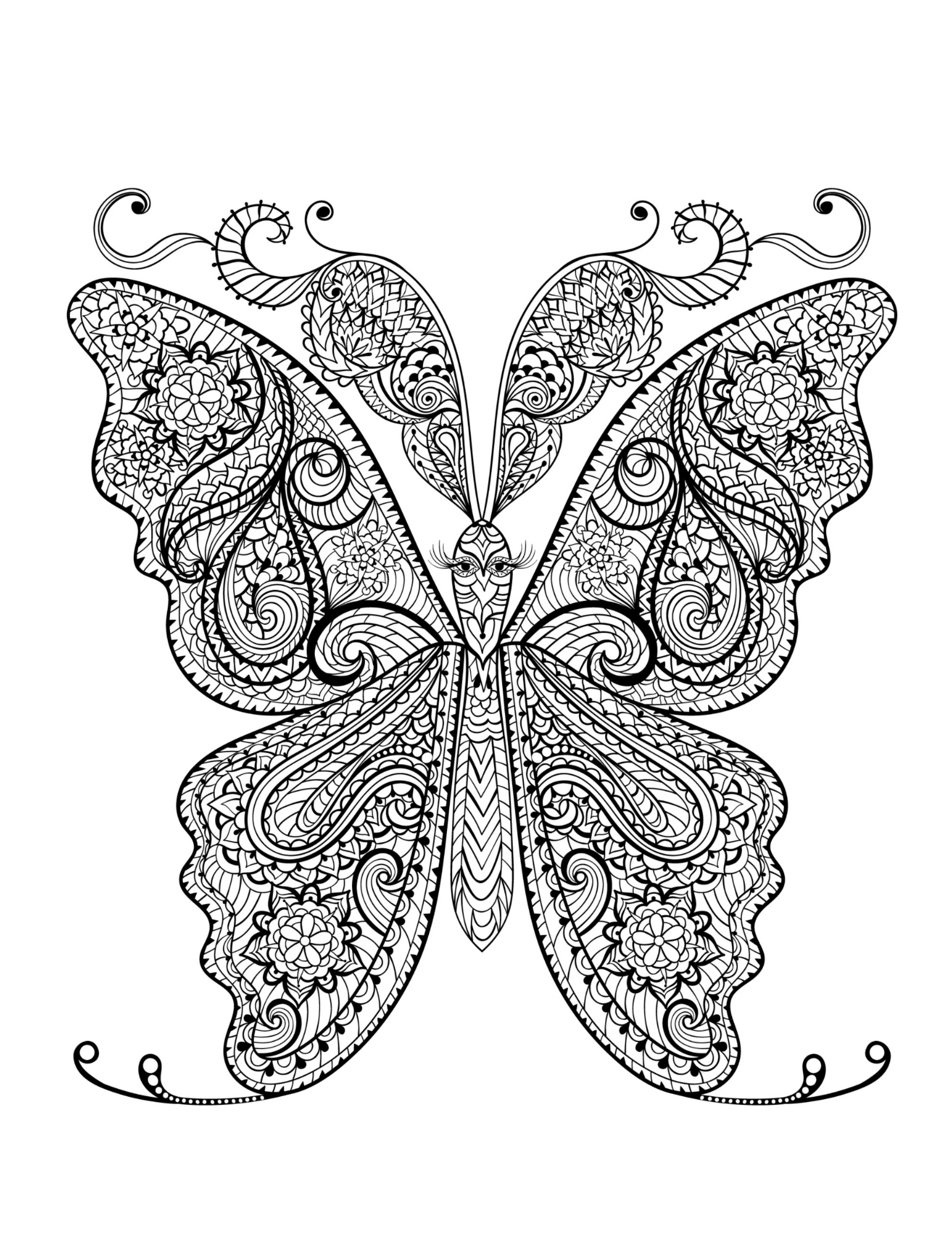 Coloring Book For Adults  Adult Coloring Pages Animals Best Coloring Pages For Kids