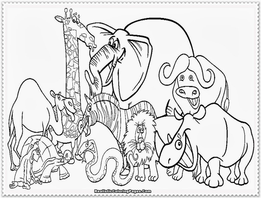 Coloring Book For Kids Animals  Zoo Animal Coloring Pages