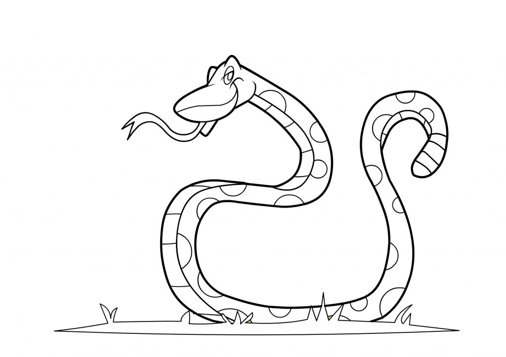 Coloring Books For Toddlers  Free Printable Snake Coloring Pages For Kids
