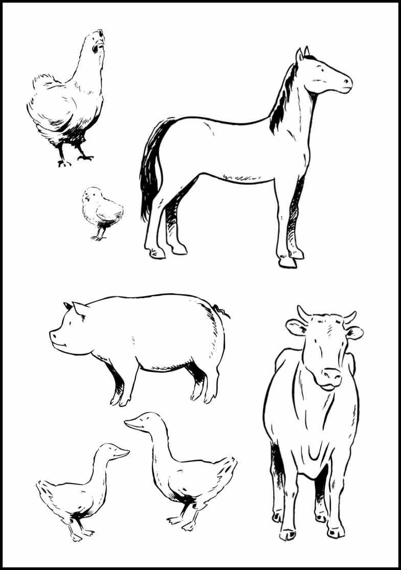 Coloring Pages Farm Animals  Farm Animal Coloring Pages Bestofcoloring