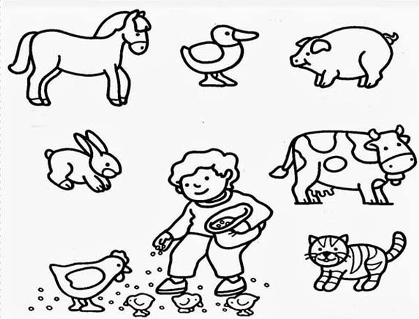 Coloring Pages Farm Animals  Farm Animals coloring Download Farm Animals coloring