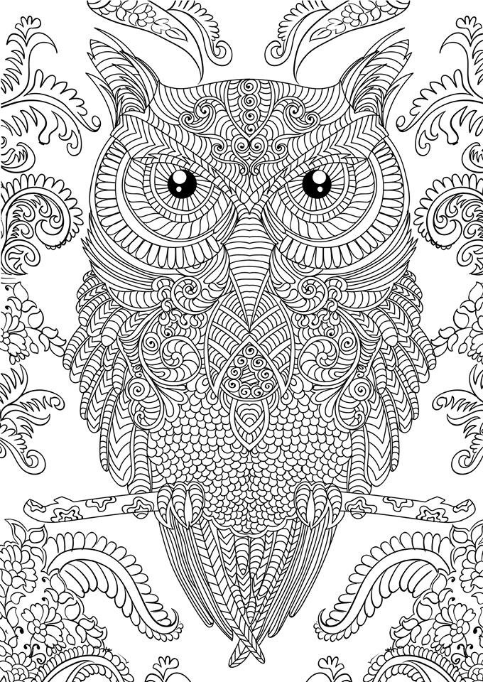 Coloring Pages For Adults Difficult  10 Difficult Owl Coloring Page For Adults