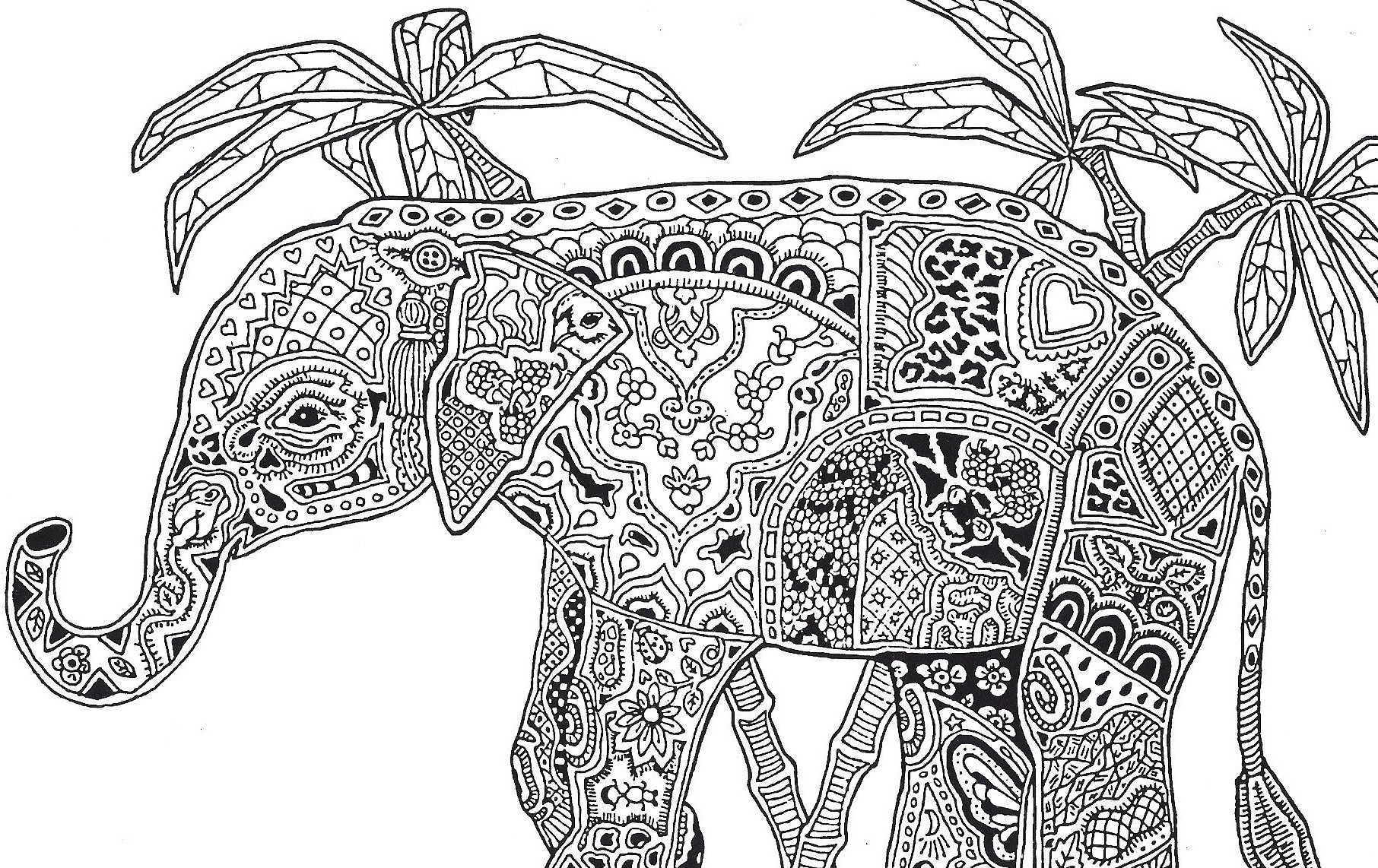 Coloring Pages For Adults Difficult  Difficult Animals Coloring Pages For Adults – Color Bros