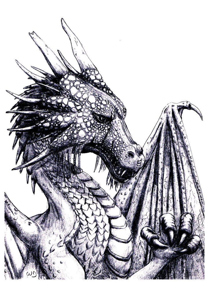 Coloring Pages For Adults Dragon  30 Dragon Coloring Pages for Adults Gianfreda