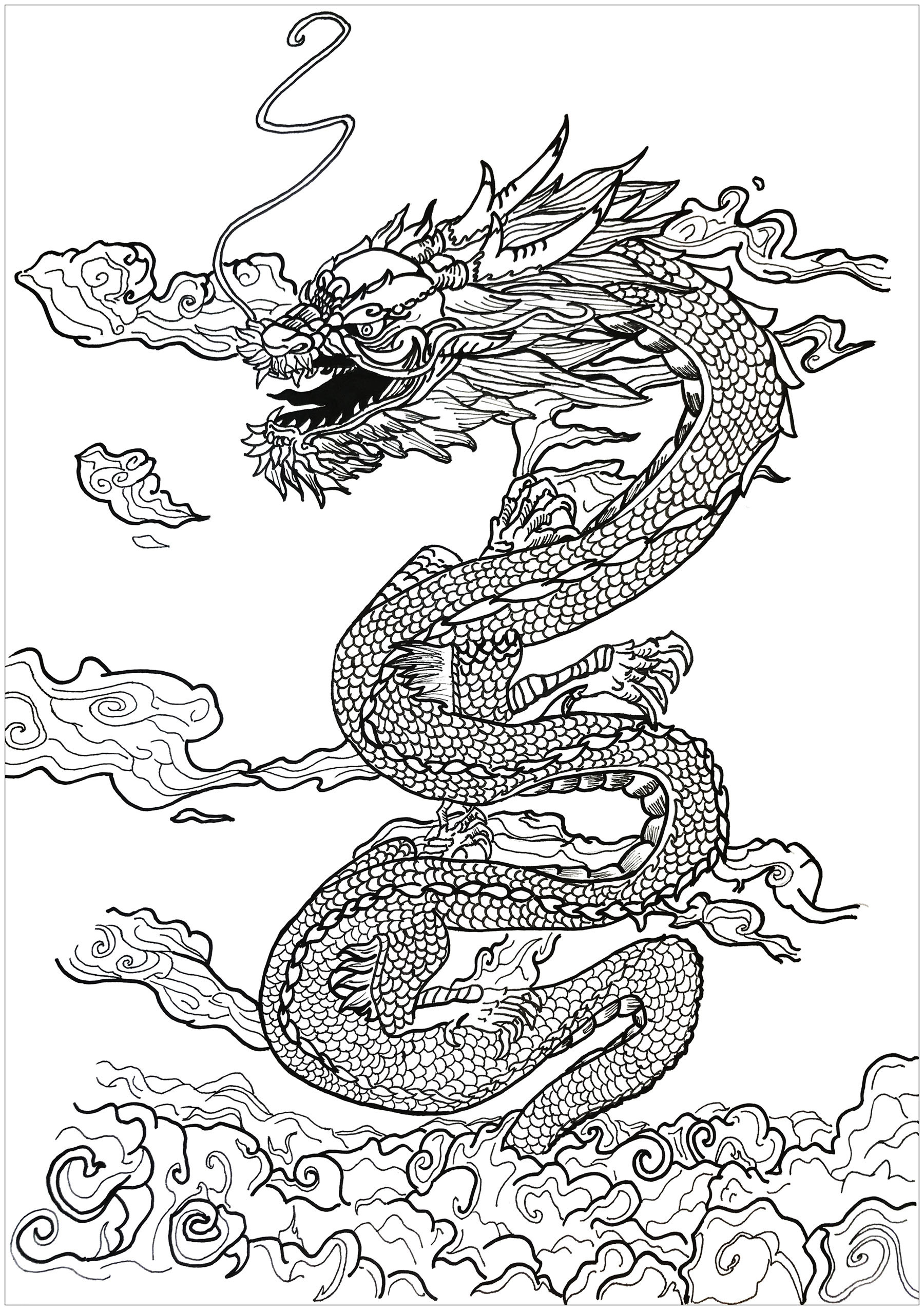 Coloring Pages For Adults Dragon  Dragon asian inspiration