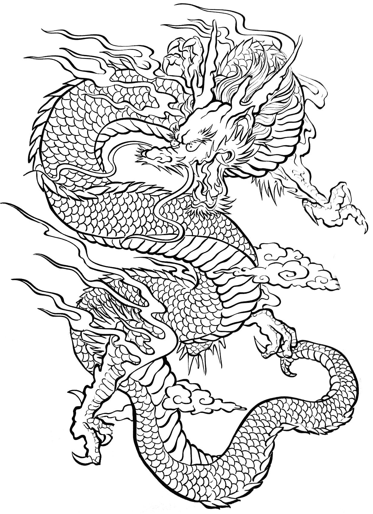 Coloring Pages For Adults Dragon  Tattoo dragon Tattoos Adult Coloring Pages